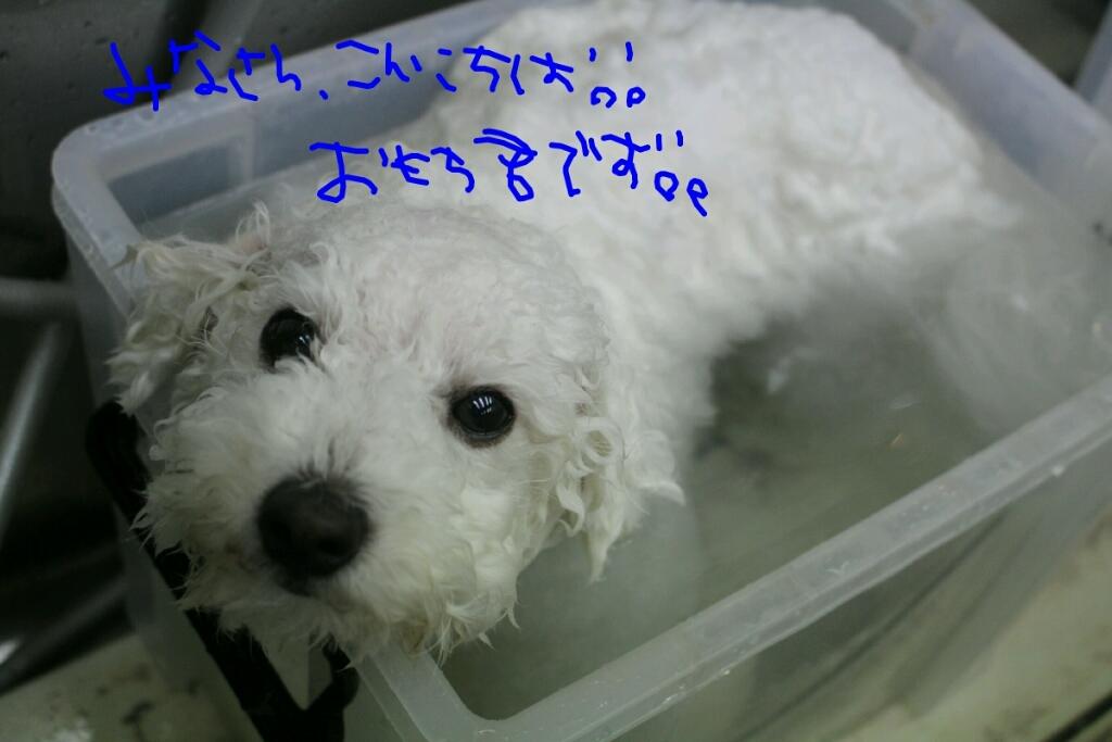 安室奈美恵_b0130018_16234050.jpg