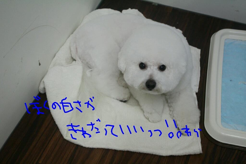 安室奈美恵_b0130018_16274668.jpg