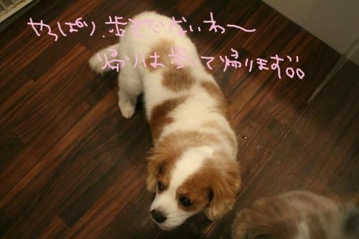 安室奈美恵_b0130018_16413766.jpg