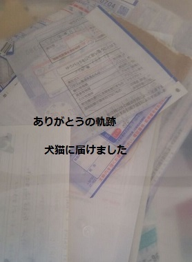 f0343323_08250603.jpg