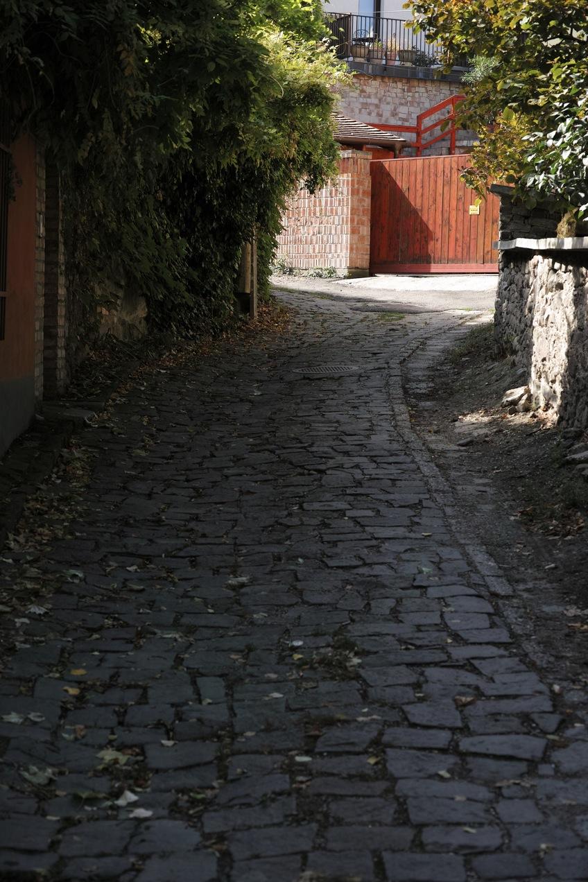 ブダペスト、ドナウベント、センテンドレ_d0133581_0295714.jpg
