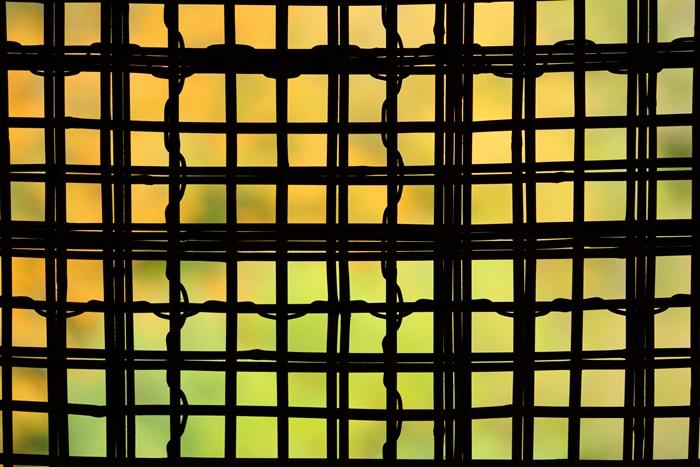 SONY αアンバサダーの撮影ツアー in 星野リゾート 界 箱根に参加しました。 PART5_b0145398_20343085.jpg