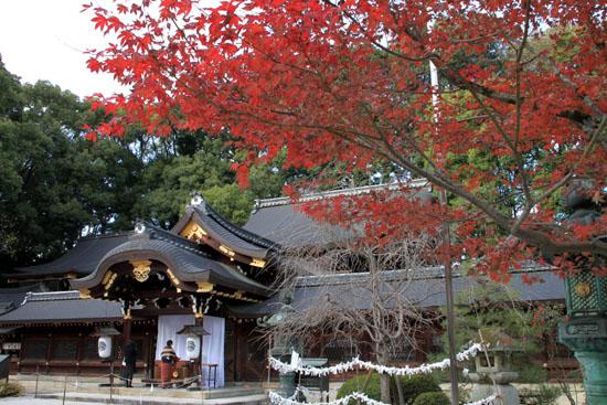 紅葉だより59 今宮神社_e0048413_19465550.jpg