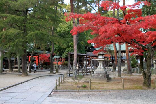 紅葉だより59 今宮神社_e0048413_19471797.jpg