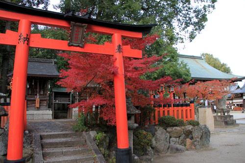 紅葉だより59 今宮神社_e0048413_19472836.jpg