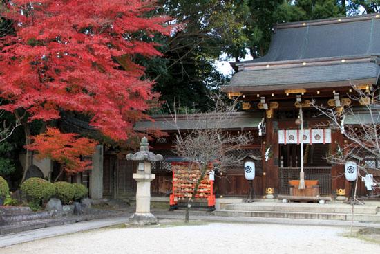 紅葉だより59 今宮神社_e0048413_1947872.jpg