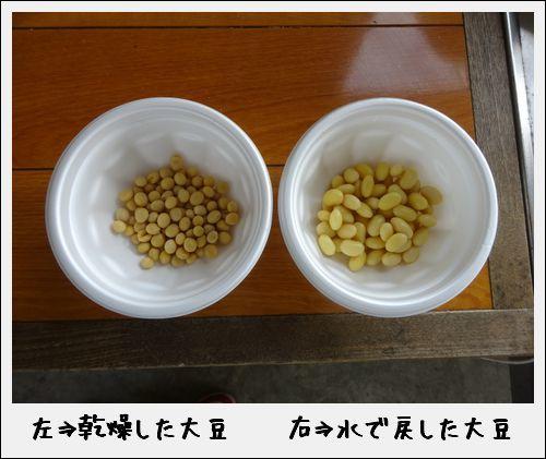 豆腐づくり体験なのだ!_c0259934_10101821.jpg