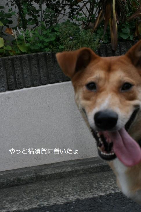 空海くん 新生活スタート!_f0242002_215716100.jpg