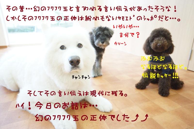 d0220513_18513886.jpg