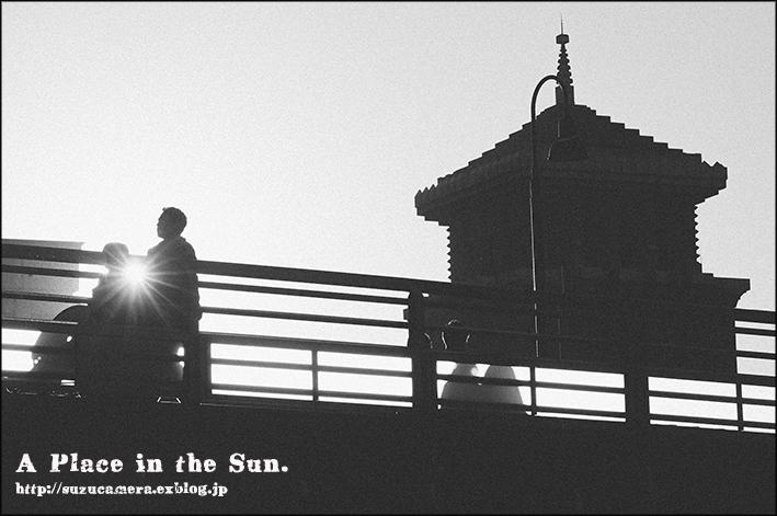 陽のあたる場所_f0100215_00553193.jpg