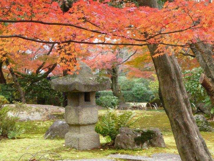 2015年紅葉便り:京都_c0051620_6253392.jpg
