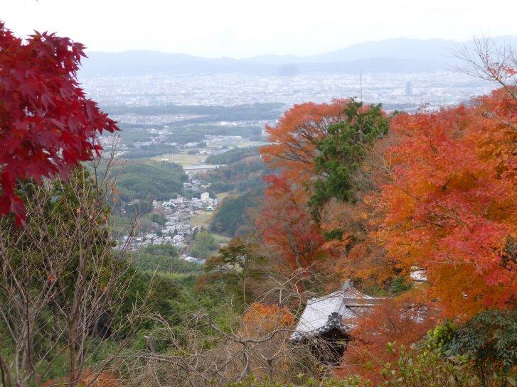 2015年紅葉便り:京都_c0051620_6265479.jpg
