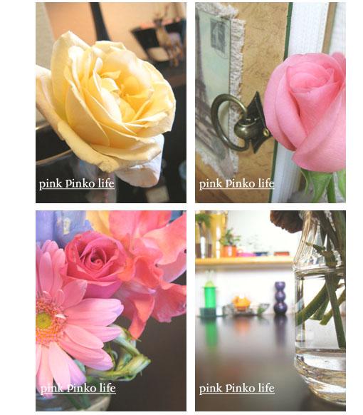 お花がいっぱい.。゜+.(・∀・)゜+.゜_d0351435_17362743.jpg