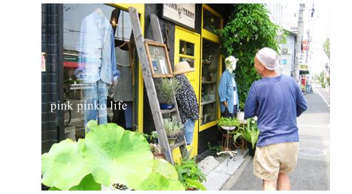 cafe と 博士_d0351435_17465751.jpg