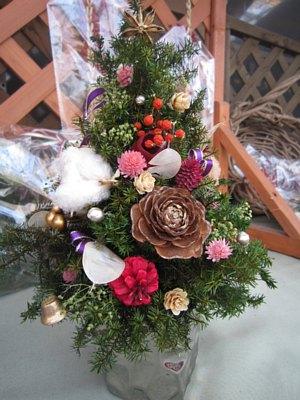 クリスマス前のさんハウス四季_c0141652_13221634.jpg