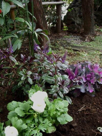 お庭。。。_a0229658_1736287.jpg