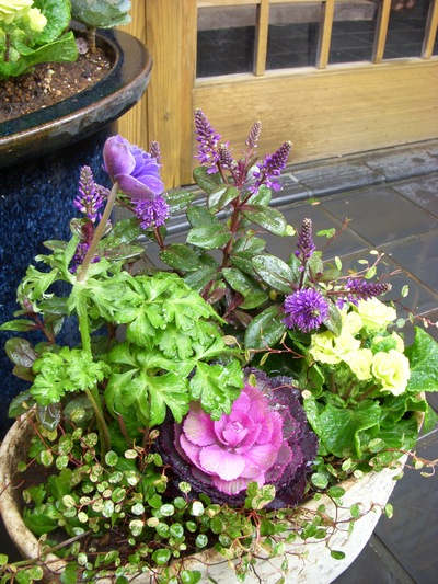 お庭。。。_a0229658_17373142.jpg