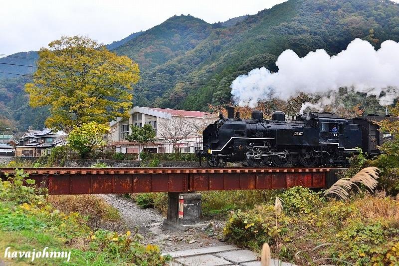 黄葉と白煙~SL大井川鉄道~_c0173762_22392877.jpg