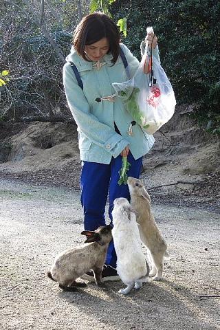 「ウサギ栄養学」の「専門性」。_b0141773_22381717.jpg