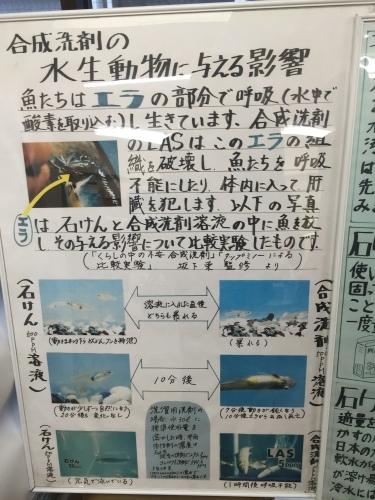 大学生のJIMOTO EYE「仙台石けんをひろめる会」_d0029276_09463978.jpeg