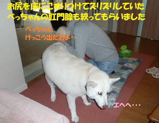 f0121712_10231322.jpg