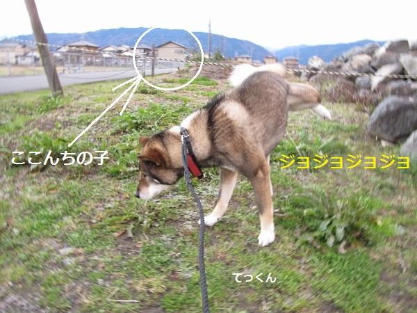 f0143123_2011612.jpg