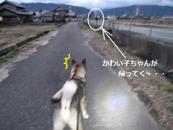 f0143123_20142031.jpg