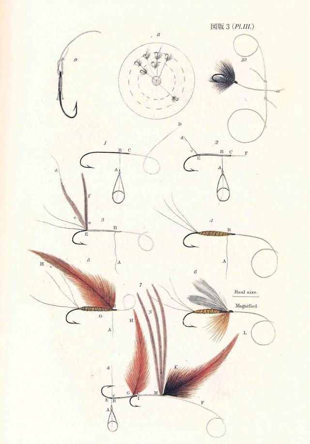 「フライフィッシャーの昆虫学」改訂版  到着してました。_e0029256_1032311.jpg
