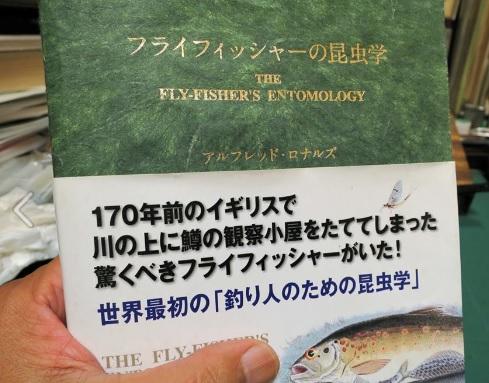 「フライフィッシャーの昆虫学」改訂版  到着してました。_e0029256_9341322.jpg