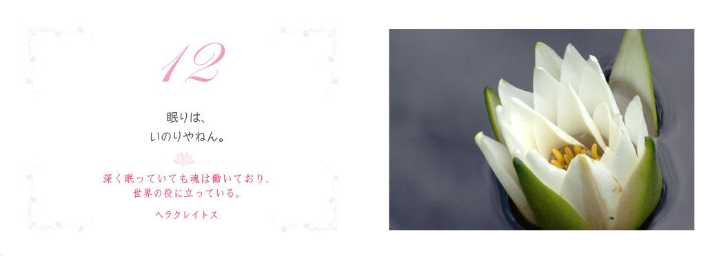 f0355165_953471.jpg