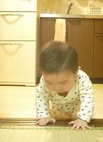 f0114468_14203685.jpg