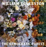 William Eggleston: The Democratic Forest_c0214605_15545322.jpg