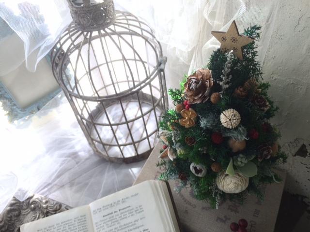 リクエストクリスマスレッスン_e0128024_14254265.jpg