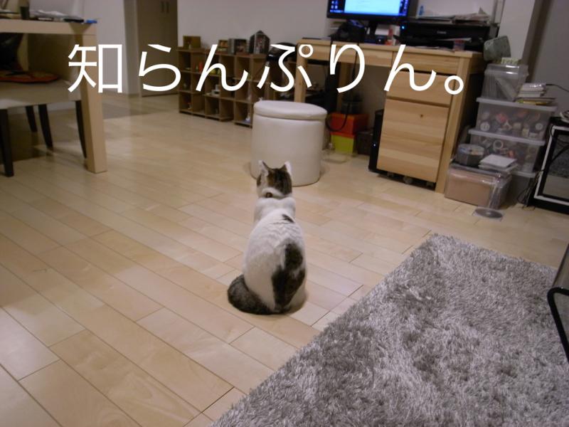 f0032042_18304793.jpg