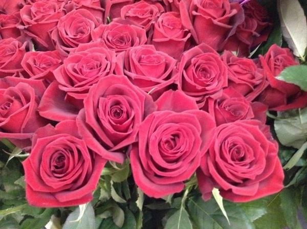 12の誓いの、12本の赤いバラの花束。_b0344880_16083193.jpg