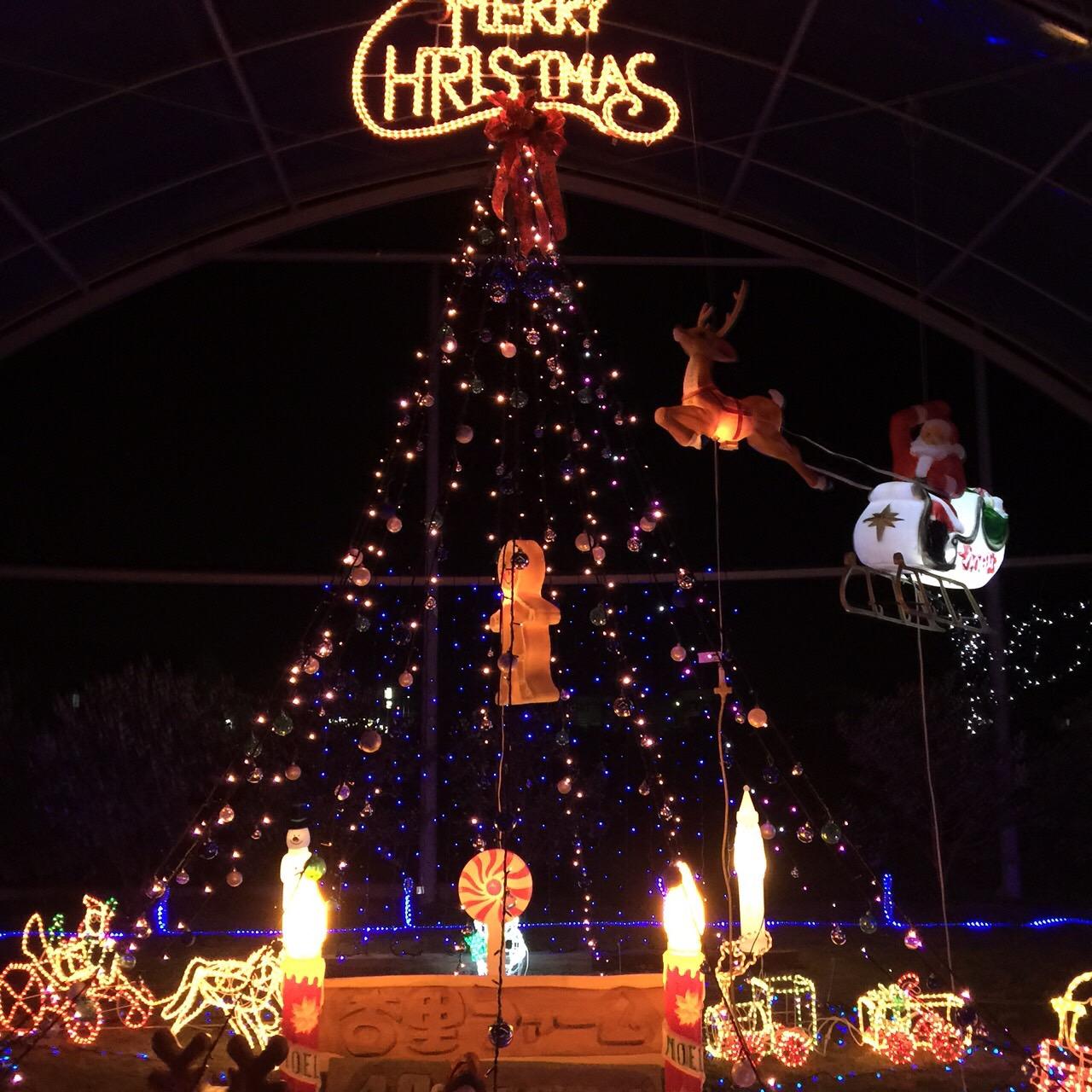 第4回杏里ファームクリスマスライブ_e0221583_10572760.jpg