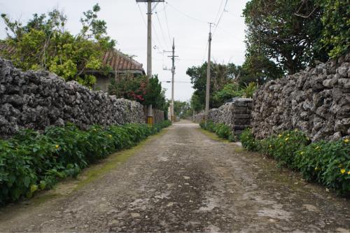 海界の村を歩く 東シナ海 黒島(沖縄県竹富町)_d0147406_14195404.jpg