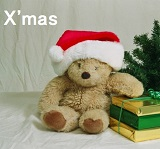 """クリスマスBMJ:ヒトの脳における""""クリスマス中枢""""はどこに?_e0156318_10323428.jpg"""
