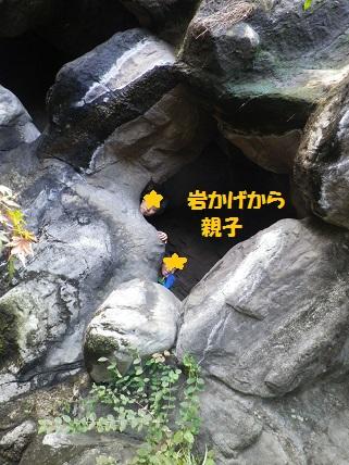 b0102728_1112766.jpg