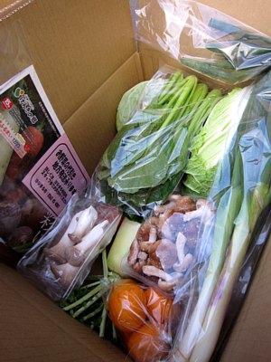 野菜BOX限定100箱!_c0141652_10385438.jpg