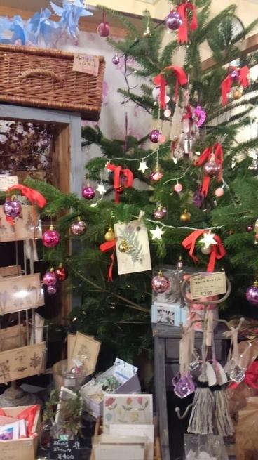 ハウココさんでクリスマスコンサート_a0117358_23223145.jpg