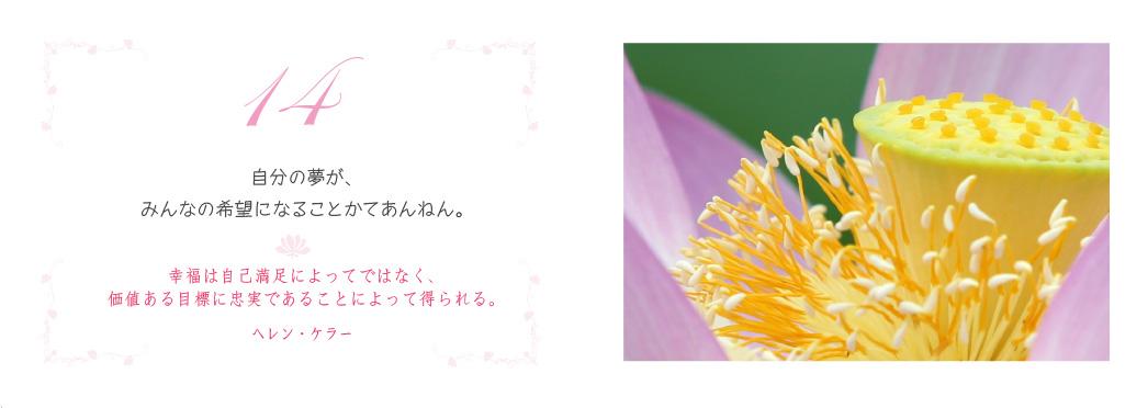 f0355165_17261634.jpg