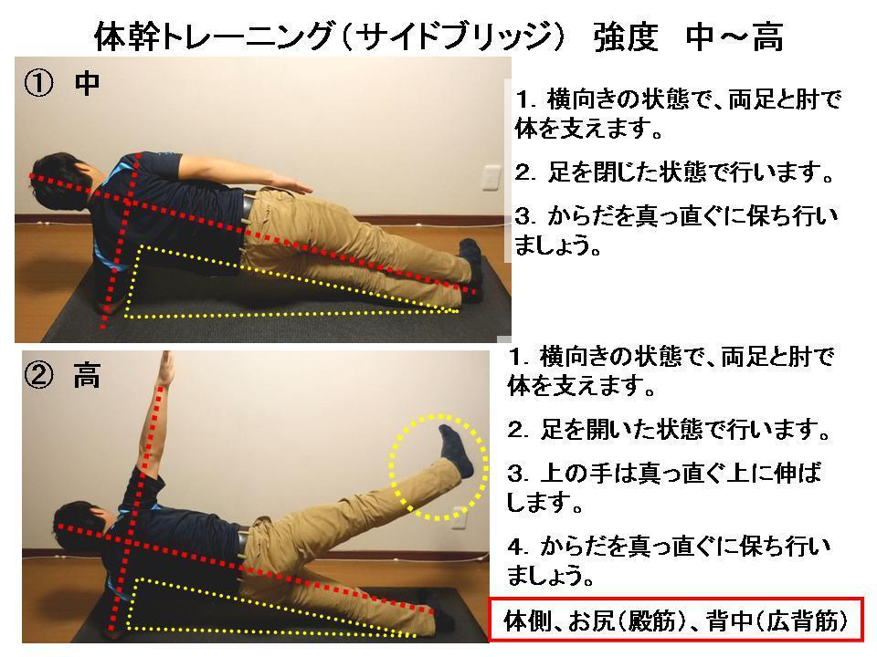 体幹トレーニングの効果的な方法 No.8「サイドブリッジ」_c0362789_20223942.jpg