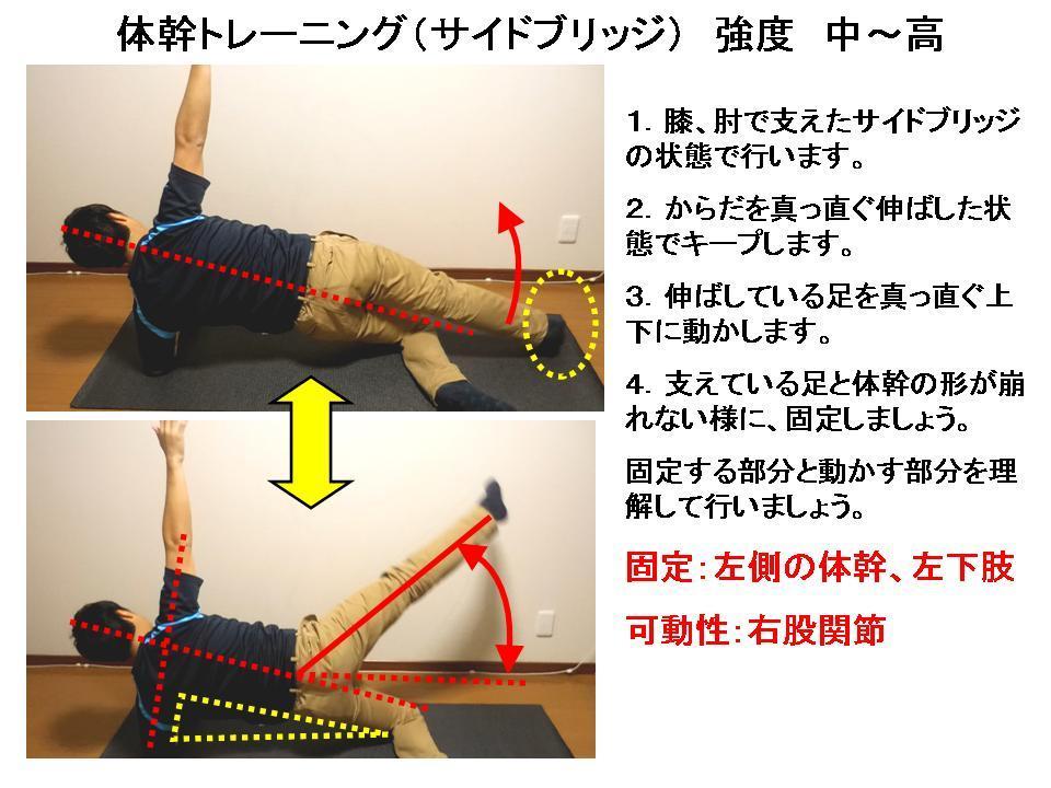体幹トレーニングの効果的な方法 No9「サイドブリッジNo3」_c0362789_21422458.jpg