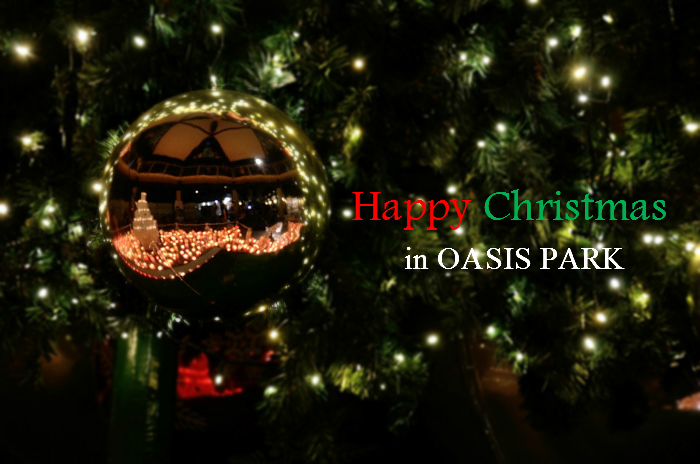 Happy Christmas in OASIS PARK_a0258099_2142259.jpg