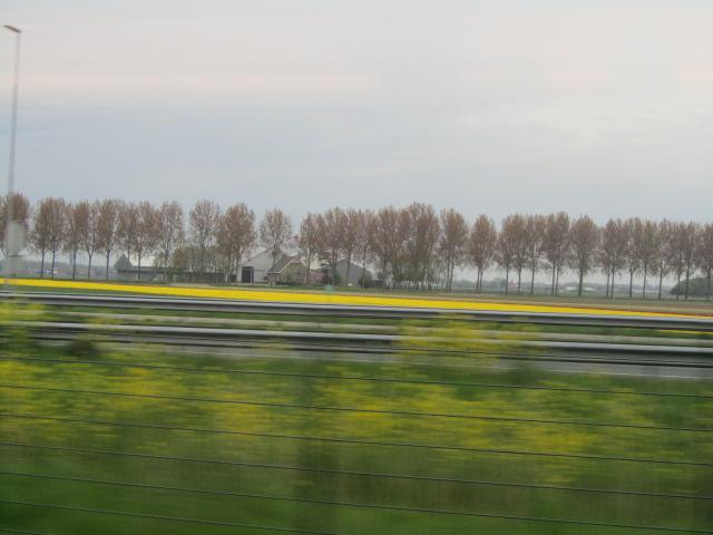 オランダ&ベルギー6日目①_a0100706_2281967.jpg