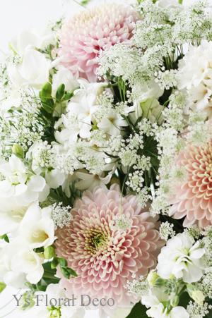 ピンクの菊 セイオペラ_b0113510_19112643.jpg