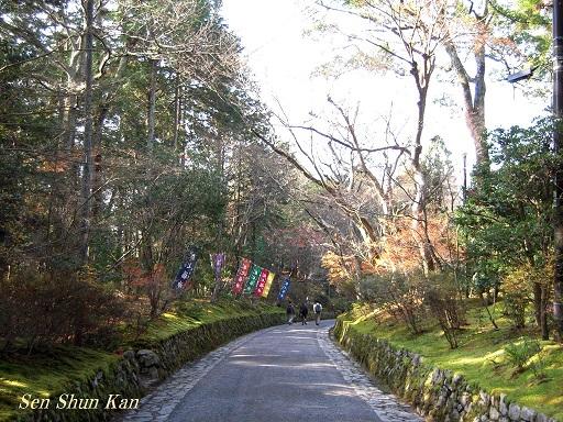 京都名残の紅葉 2015年12月13日_a0164068_14503585.jpg