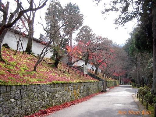 京都名残の紅葉 2015年12月13日_a0164068_1451029.jpg