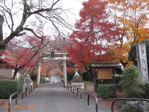 京都名残の紅葉 2015年12月13日_a0164068_14521362.jpg